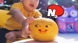 오렌지가 살아 있어요!