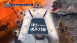 곽승준의 쿨까당 384화