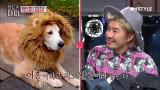 [선공개]NCT도영, 선배 아이린을 닮은 동물은?