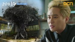 (TMI) 가문의 나무, 그것이 알고싶다! #3분_완벽_요약