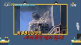 인류 최악의 재앙 9.11 테러 [반드시 기억해야 할 그 날들 19]