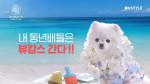 [겟뷰콘] 항공권에 숙박권까지?! 무료입장인데 혜자 선물 클라스 인정