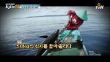 바다의 왕자 '참치 사냥꾼' [지금까지 이런 직업은 없었다 19]