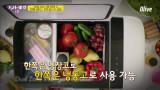 가족 나들이 품격을 올려주는 '이동식 냉장고'(아이스박스X) [태양을 피하는 여름 생존템10]