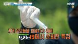 [예고] 납량특집 4탄! 무엇을 보든 믿지 마라!_음모론 19