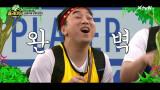 상상초월 퀄리티 'Lion sleeps tonight' by 패기물들