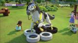 말을 훈련 시키는 법!