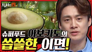 슈퍼 푸드 ′아보카도′의 두 얼굴? [지구의 역습이 시작됐다 19]