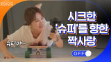 시크한 진돗개 ′슈퍼′를 향한 정화의 짝사랑