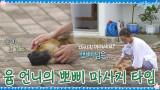 뽀삐가 제일 행복한 순간♡ 유미 언니의 마사지 타임