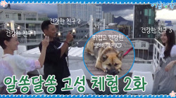 <정유미 최우식의 알쏭달쏭 고성 체험> 2화 ′건강한 친구들′