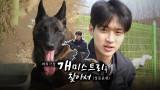 [스페셜] 써치극장 장동윤편, '개'미스트리를 찾아서…