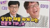 수산시장에서 싱싱한 해물 저렴하게 사는 전문가 TIP (feat. 새벽형 인간?)