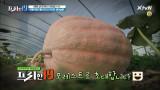 [예고] 전 세계 농촌에서 일어나는 버라이어티! 흙에 살어리랏다! 전원일기 19